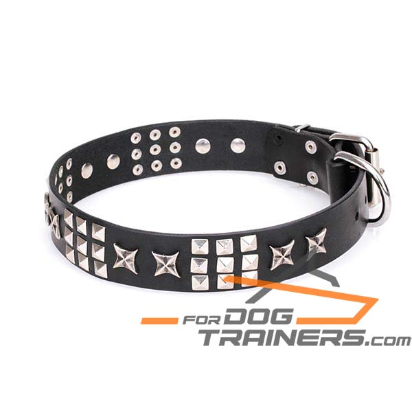 Leather Dog Collar with Silver-Like Decorations
