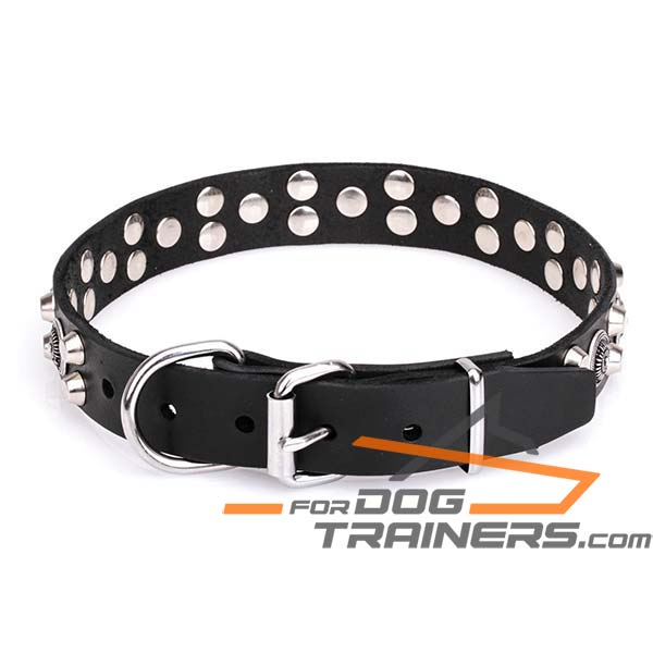 Leather Collar with Chrome-plated Steel Buckle