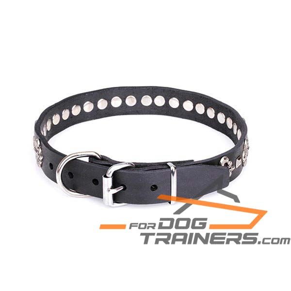 Dog Leather Collar with Chrome-plated Steel Hardware