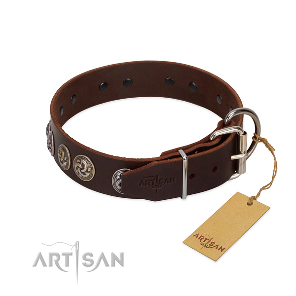 Uniquely Designed Dog Collar Equipped with Rustproof Fittings