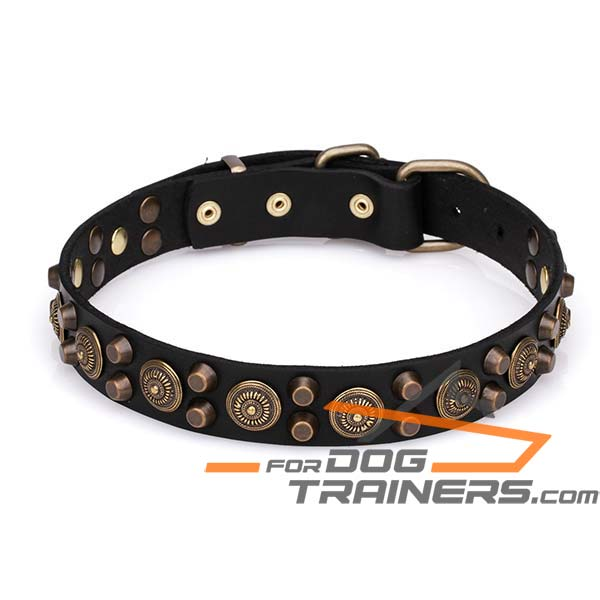 Stylish Dog Collar with Decor