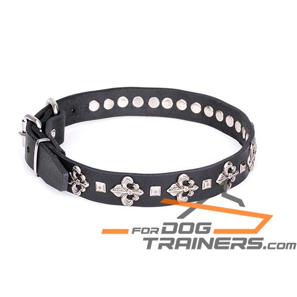 Dog Leather Collar for Daily Walking