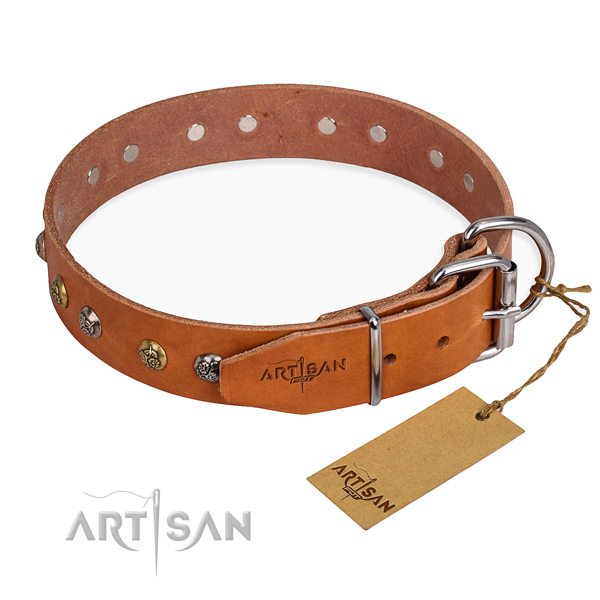 Leather Dog Collar with Chrome Plated Steel Fittings