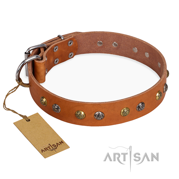 Leather Dog Collar with Engraved Studs