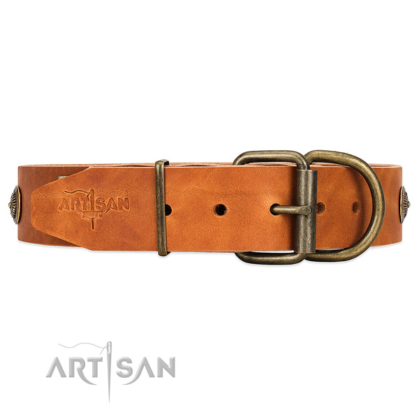 Strong Corrosion-resistant Buckle on Adjustable Dog Collar