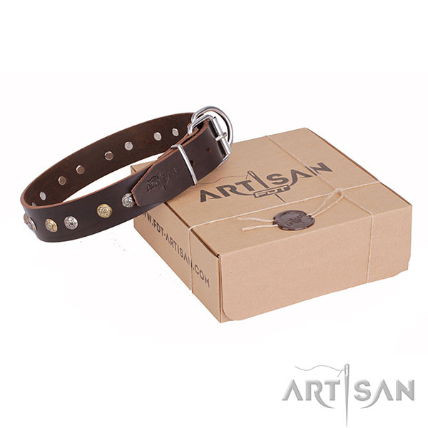 Brown Leather Dog Collar Handcrafted by Artisan