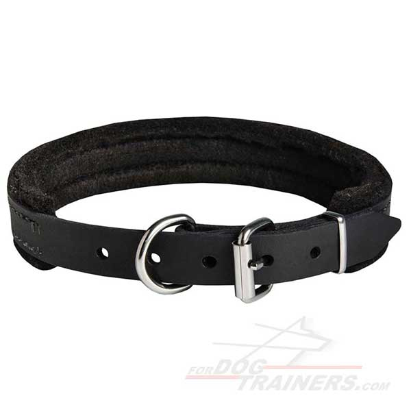Leather Dog Collar with Strong Nickel Hardware for Training
