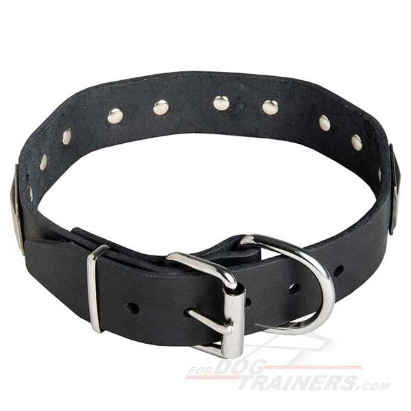 Dog Leather Collar Nickel with Plated Buckle and D-Ring