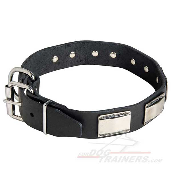 Leather Dog Collar Nickel Plated Hardware