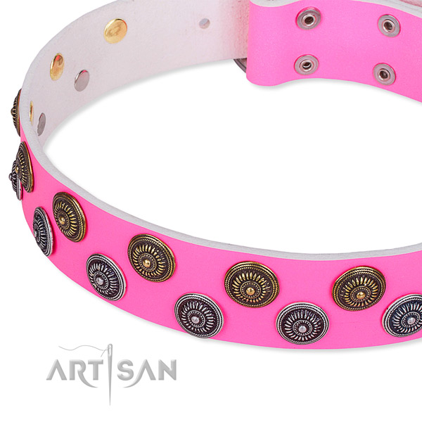 Stylish Dog Collar for Walking