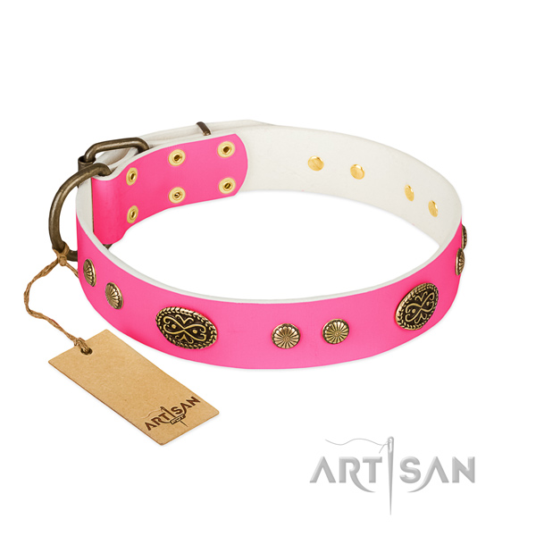 Decorative Leather Dog Collar for Safe Walking