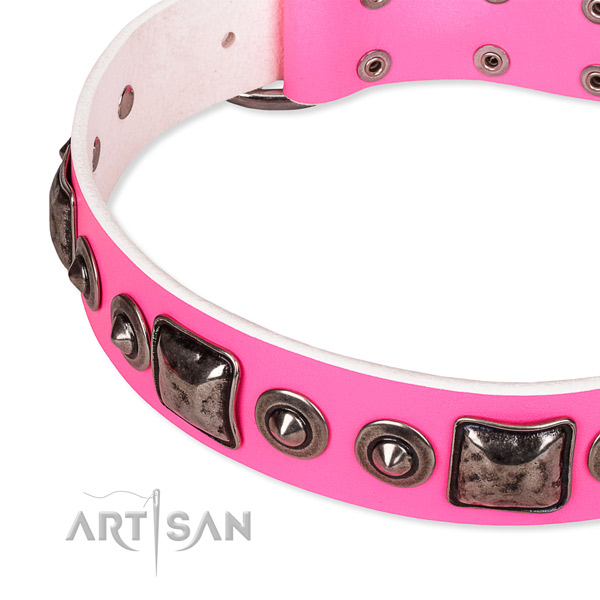Stylish Dog Collar with Silver Look Decor