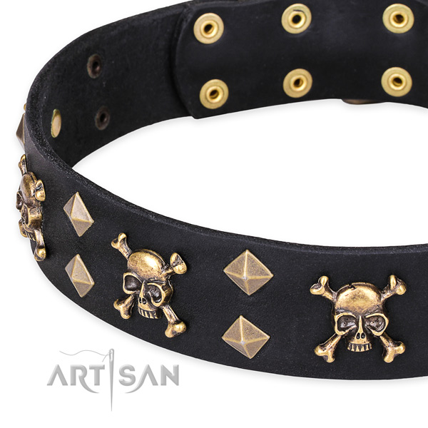 Black Top Quality Dog Collar with Incredible Design