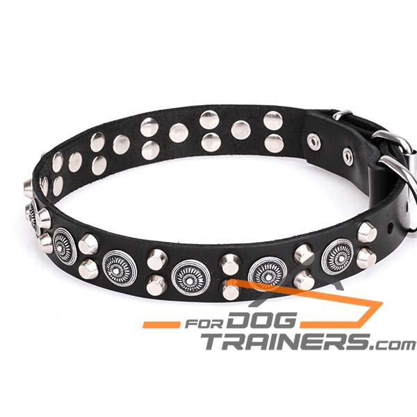 Genuine Leather K9 Collar with Rivets