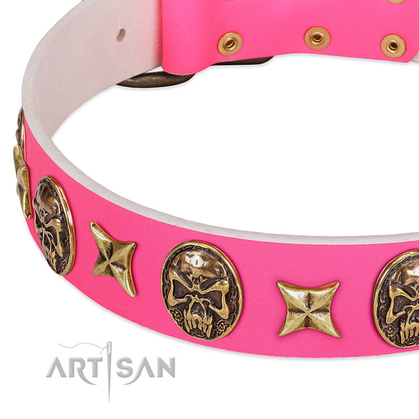 Trendy FDT Artisan Leather Dog Collar with Riveted Decor