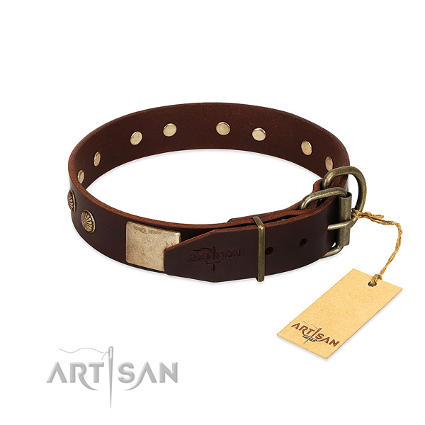 Brown Dog Collar Equipped with Rustproof Hardware