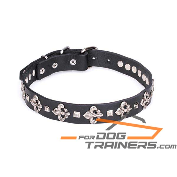 30 mm Dog Leather Collar with Silver-like Fittings