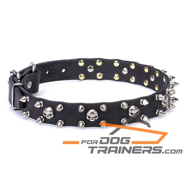 Thin Dog Collar with Rust Resistant Decorations