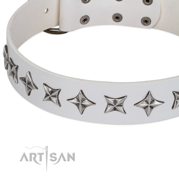 Leather Dog Collar Decorated with Stars