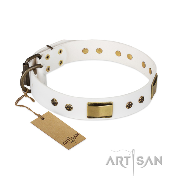 White Dog Collar with Bronze Plated Fittings