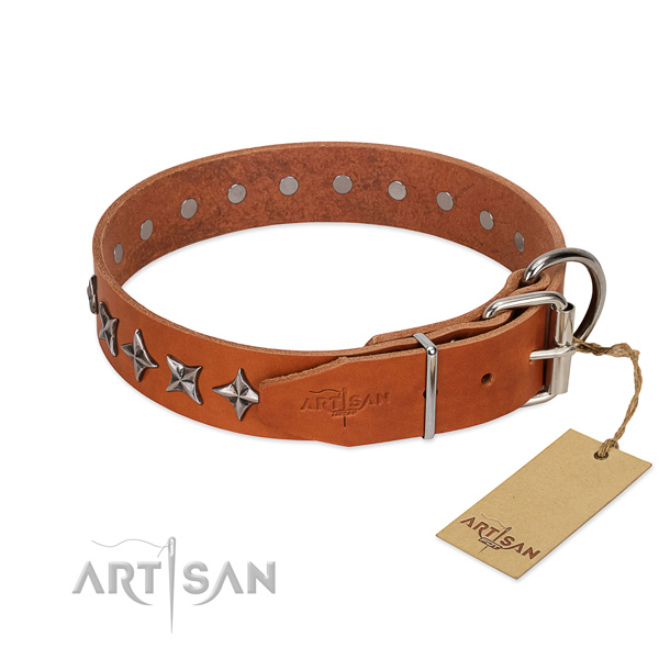Strong Leather Dog Collar for Safe Walking