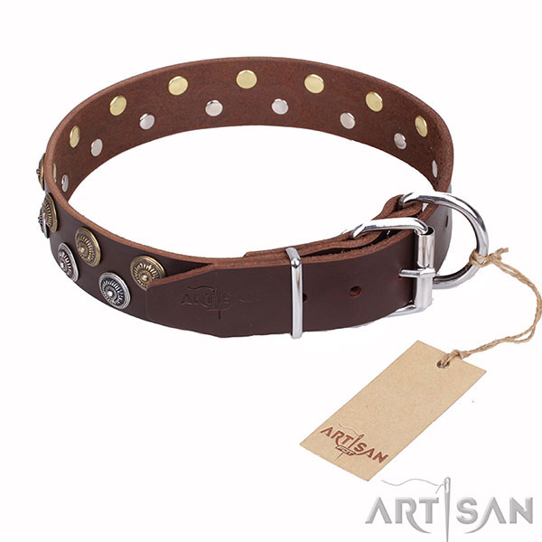 Brown Leather Dog Collar with Round Decorations and Strong Hardware