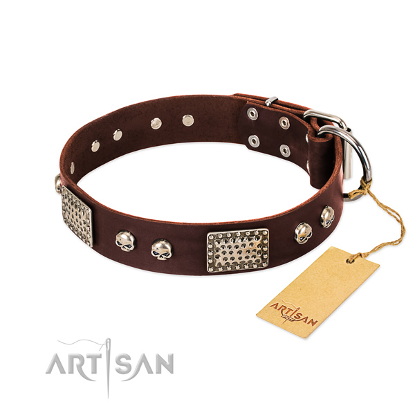 Brown Dog Collar of Artisan Design