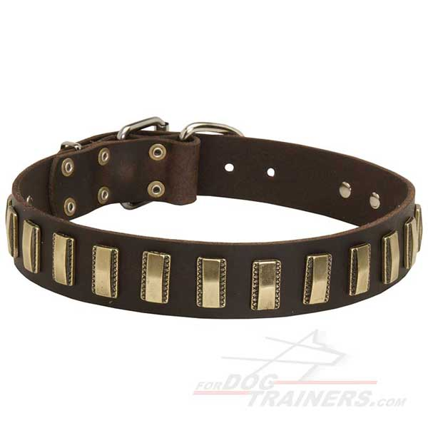 Walking Leather Dog Collar Designer Dog Gear