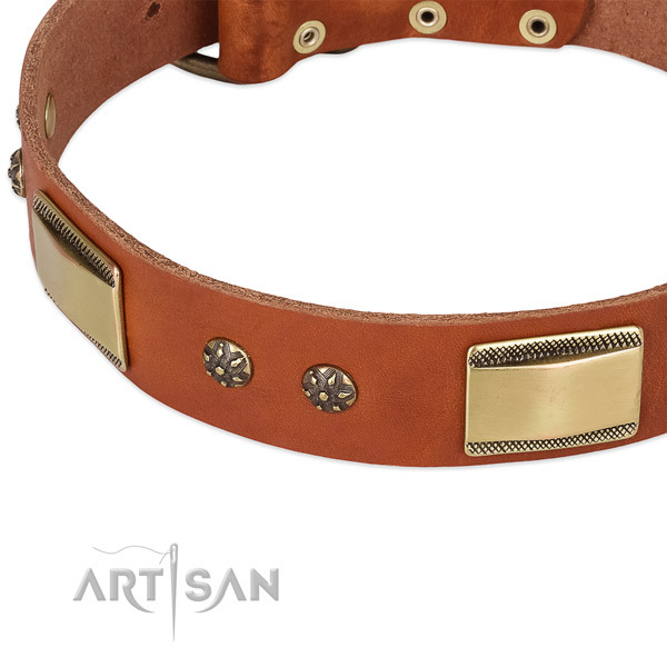 Brass Look Decor on Tan Dog Collar