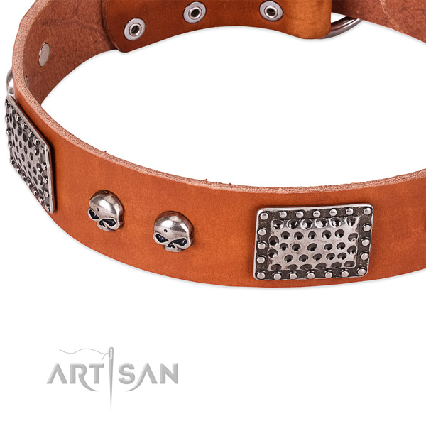Old Silver Look Decor on Tan Leather Dog Collar