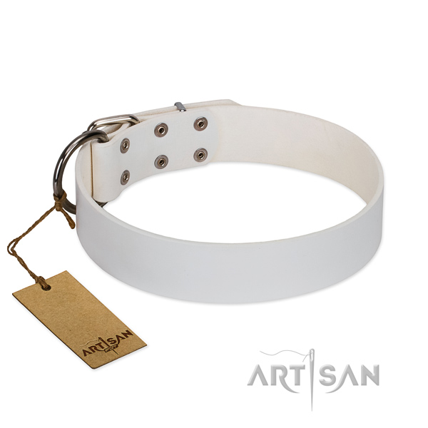 White Leather Dog Collar of Classic Design
