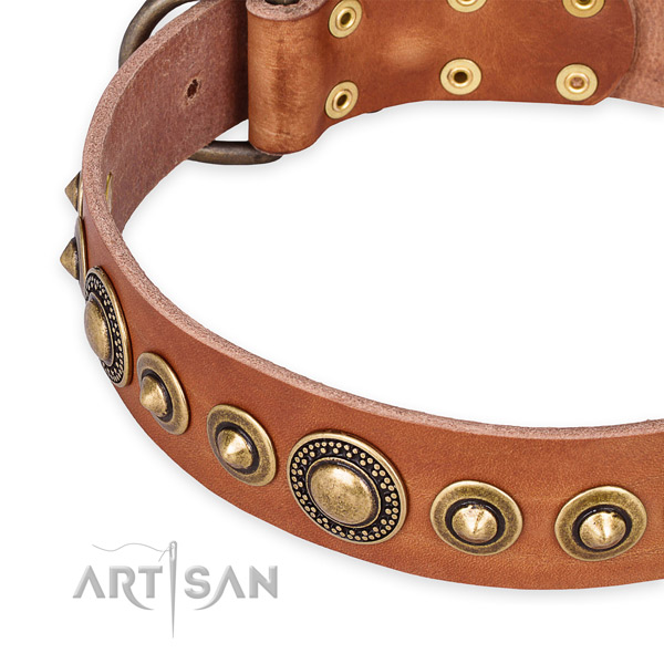 Tan Natural Leather Dog Collar with Rust Resistant Decorations