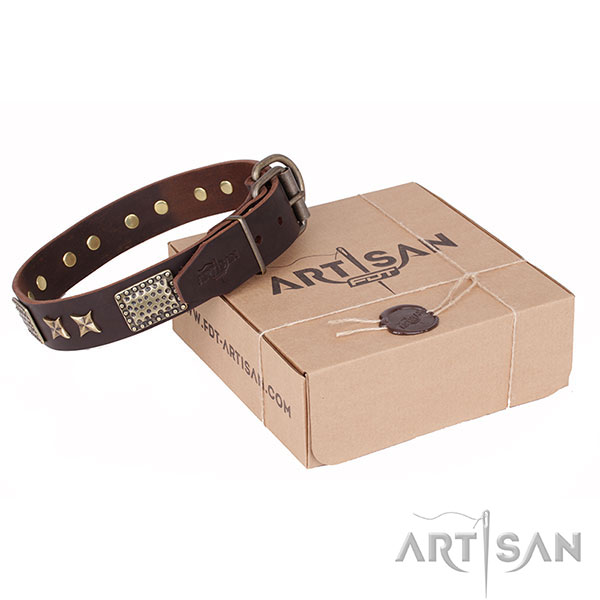 Designer Brown Leather Canine Collar