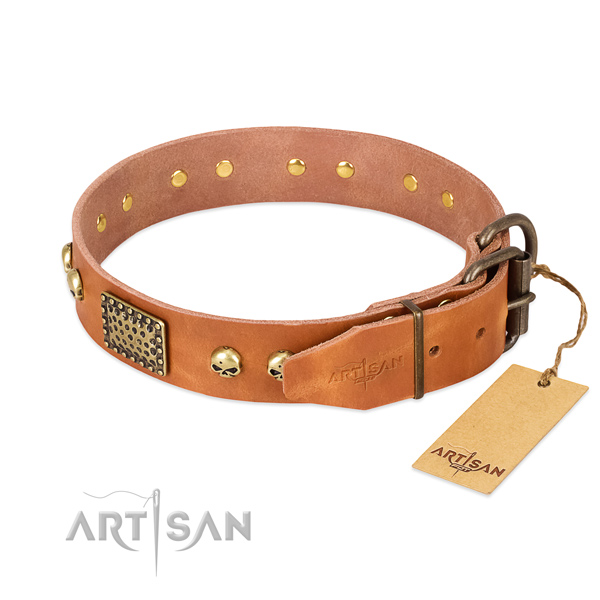 Tan Leather Dog Collar with Old Bronze Look Fittings