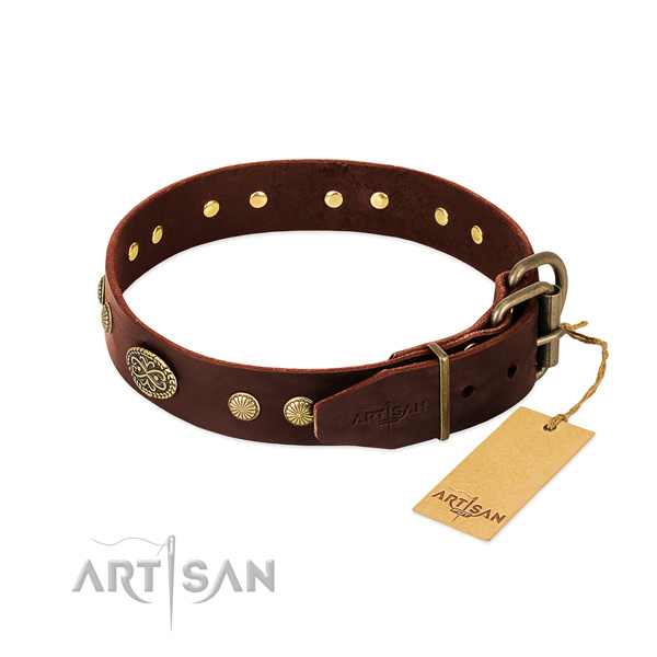 Brown Leather Dog Collar with Old Bronze Look Fittings