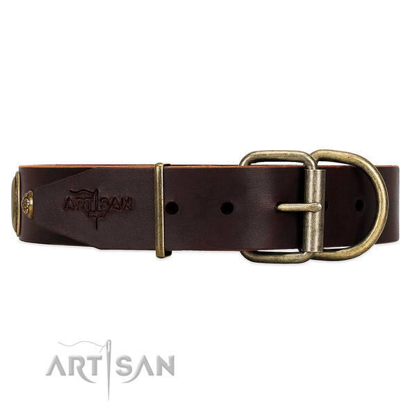 Unique Brown Leather Dog Collar with Old Bronze Look Fittings
