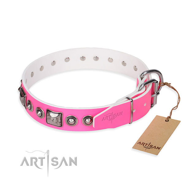 Stylish Dog Collar with Silver Look Fittings