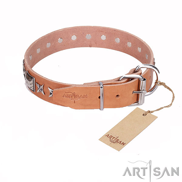 Tan Top Quality Leather Dog Collar with Strong Hardware