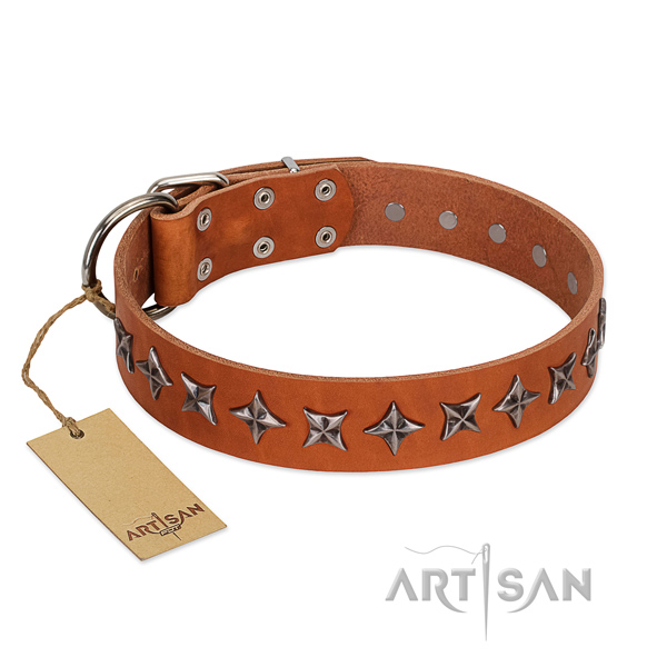 Stylish Tan Leather Dog Collar with Silvery Stars