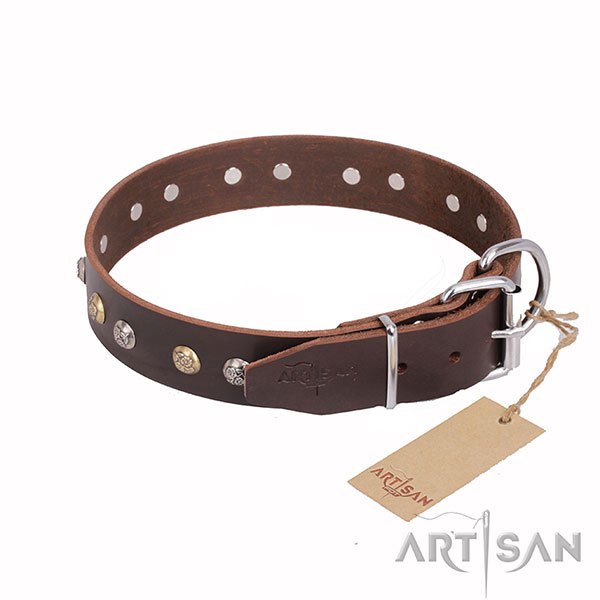 Brown Leather Dog Collar with Shiny Fittings
