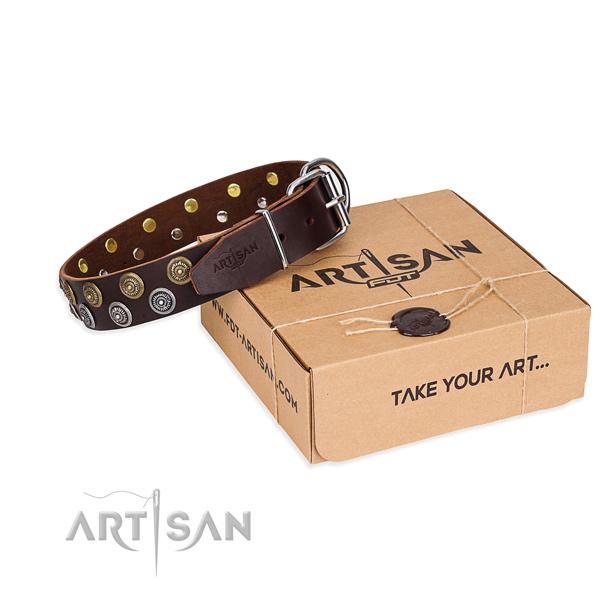 Walking Dog Collar of Soft Leather