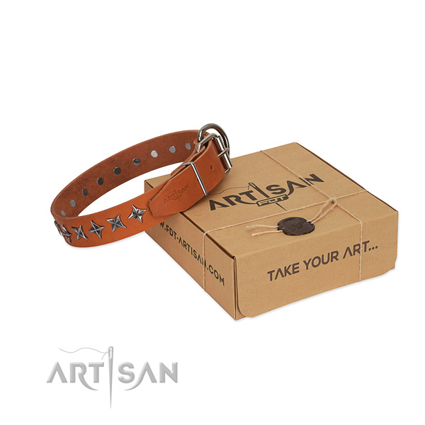 Stylish Tan Leather Dog Collar with Stars