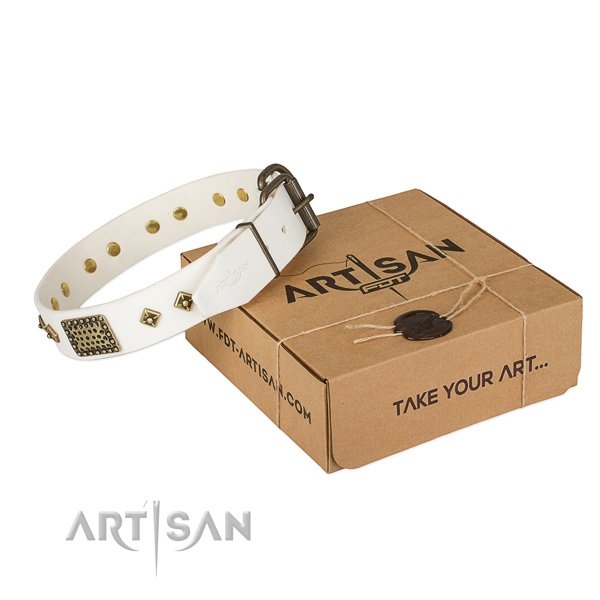 Stylish White Leather Dog Collar with Plates and Studs