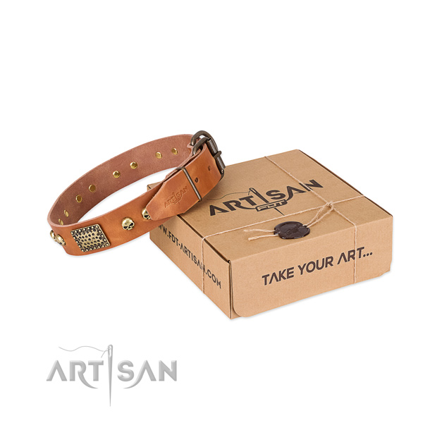 Stylish Tan Leather Dog Collar with Plates and Skulls