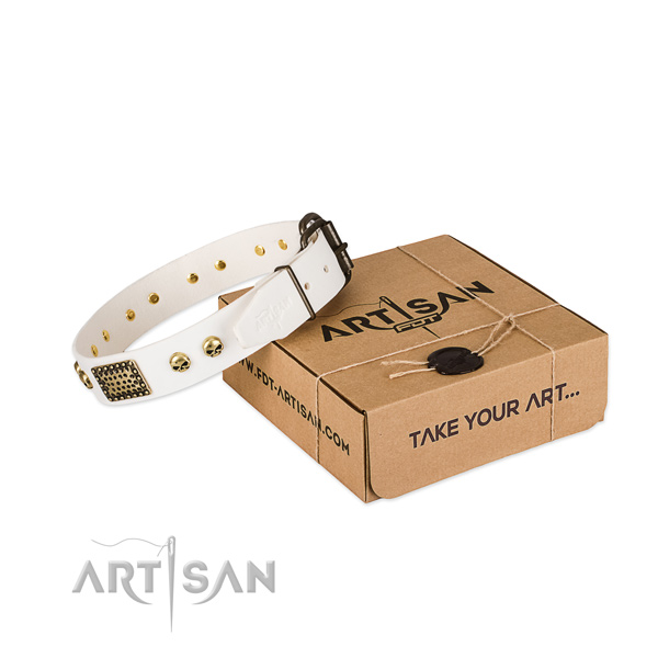 Stylish White Leather Dog Collar with Plates and Skulls
