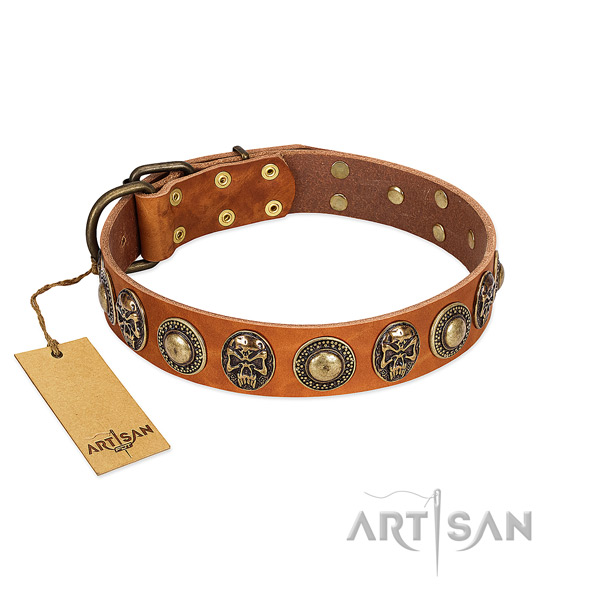 Handy Use Leather Dog Collar with Goldish Medallions