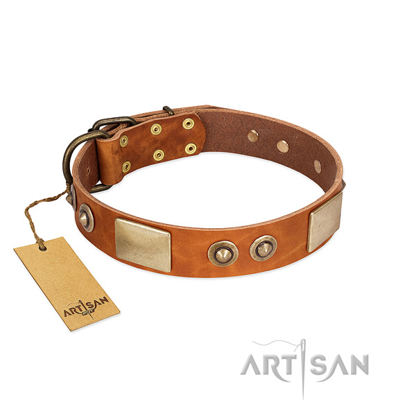 Original Design Tan Leather Dog Collar with Goldish Plates