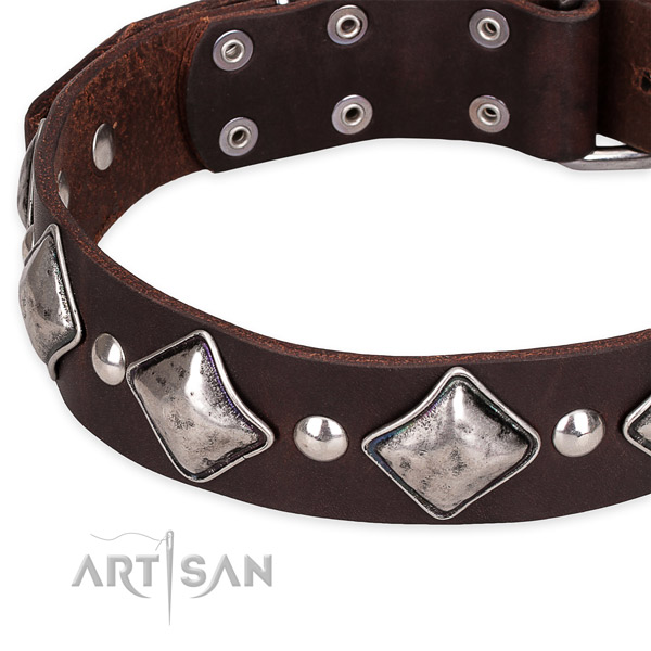 Brown Leather Dog Collar with Small Round Studs