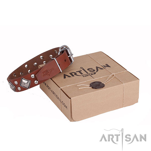 Tan Leather Dog Collar with Small Round Studs