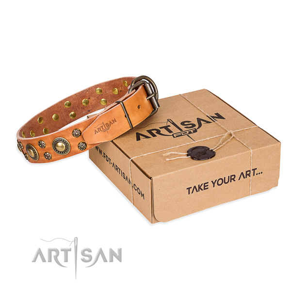 Top Quality Tan Dog Collar of Unique FDT Artisan Design